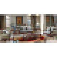 Sofás de cuero clásicos para muebles de sala (510C)
