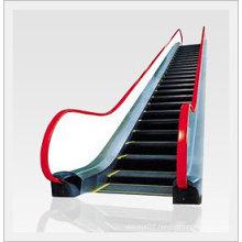 Escalator Use Special Elevator Machine of Japan Technology (FJ8000)