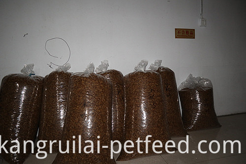 Pet Food Dried Mealworms