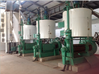 rice bran oil press