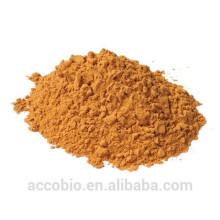 Poudre d'extrait d'écorce de Yohimbe 100% de haute qualité en vrac Yohimbine HCL 98%