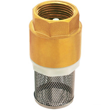 Forged Brass spring strainer check valve