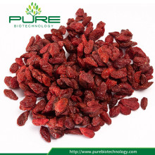 Juicy Goji Berry Still Dried 2017 New Crop
