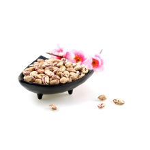 Hot selling Cranberries Beans Xinjiang Round Type Light Speckled Kidney Beans Sale In Bulk cranberries beans