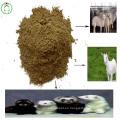 Harina de pescado Proteína en polvo Vitamina Animal Feed