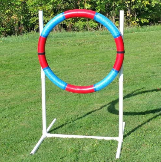 Dog Training Tire Jump