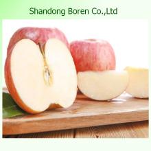 FUJI Apple в Китае из Шаньдуна