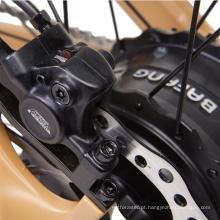 Bicicleta elétrica e bike / quadro de alumínio