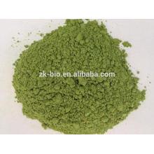 Polvo verde orgánico del jugo de trigo