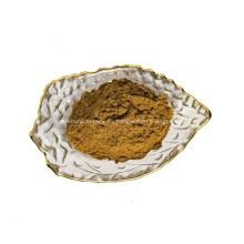 Polvo de extracto de té verde
