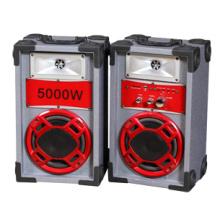 Профессиональный Mutimedia Stage Speaker P6 с конкурентоспособной ценой