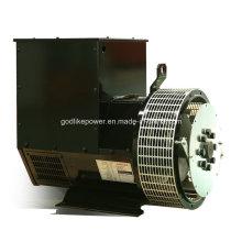 China Famous Manufacturer 64kw/80kVA Alternator Price (JDG224GS)