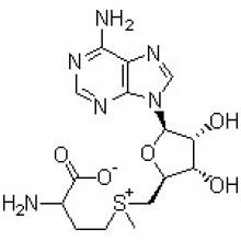S-adénosyl-L-méthionine