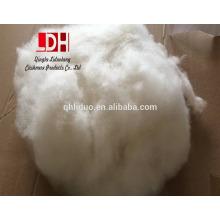 34-36mm con 15.5 micras de cachemir blanco lavado y cardado en blanco natural chino