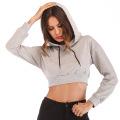 solid color long sleeves crop sweatshirt