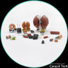 FCT50 High Frequency Professinal manufacturerred Toroid DIP Choke Coils power inductor