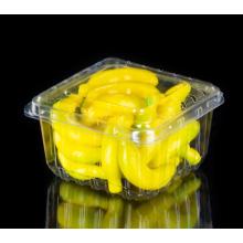Boîtes en plastique à clapet pour myrtille
