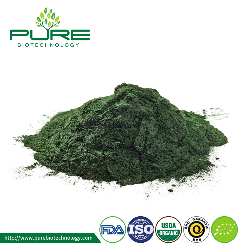 Organic Chlorella powder new