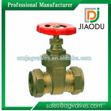 hot selling brass gate valve pump for water