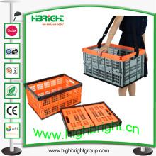 Caisse pliante de stockage de tomate en plastique