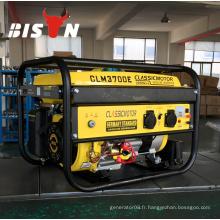 BISON CHINA Portable 4500 3kw Générateur portable à gaz