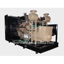 Green Power Natural Gas Generator