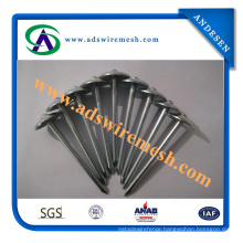 Head Sheet Cover Umbrella Roofing Nails with Shank