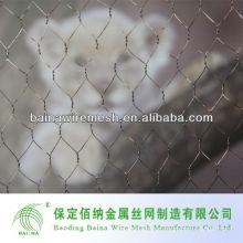 Baina Sechskant-Maschendraht für Geflügelkäfige