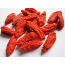 Low-Pestizid Goji Berry aus China Herkunft (160/220/350)