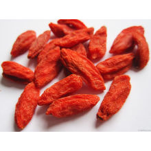 Berry de Goji de bajo plaguicida de China Origen (160/220/350)