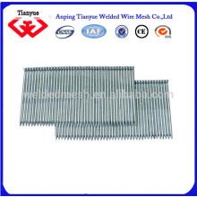 Fabricante común de clavos de acero (certificado ISO)