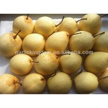 De buena calidad fresca pera Ya, pera frutas