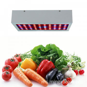 Diod LED 3W LED Grow Light