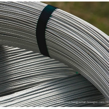 Oval Galvanized Steel Wire for Farm Fencing