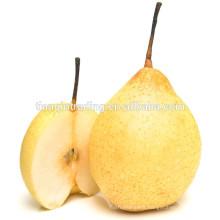 china ya pear