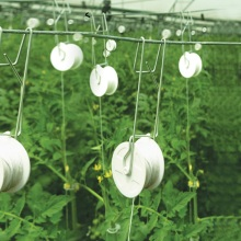 Skyplant Tomato Hook mit Rollen Grow Support Hooks