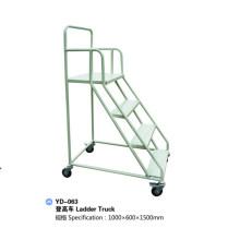 Stahllager-LKW-Schritt-Rollenleiter mit Rädern Yd-063