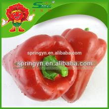 Dr pepper wholesale red bell pepper ceramic bell