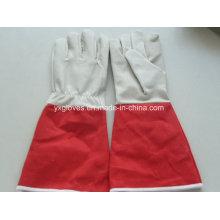 Long Cuff Garden Glove-Cheap Glove-Working Glove