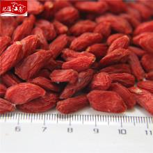 Завод питания нинся ягоды годжи комбайн