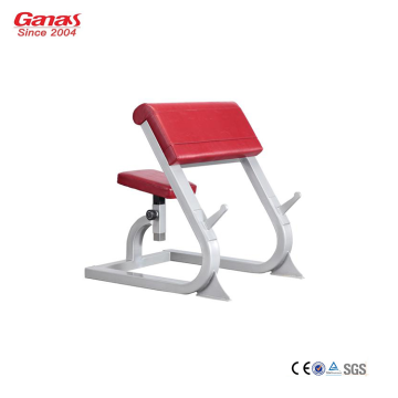 Gym Trainingsapparatuur Professionele Scott Bench