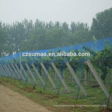Alibaba china Cheapest bare hand vineyard crop bird netting