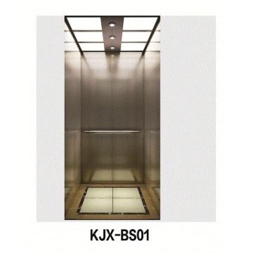 Villa Elevator with Hairline Stainless Steel (KJX-BS01)
