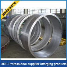 Forging Ring, Stainless Steel, Drf Factory Direct Sell