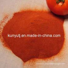 Tomate em pó com alta qualidade