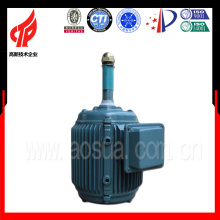 YCL Serie 0.37KW 6 Pole 3 Phase Kühlturm Motor / elektrische wasserdichte Motor