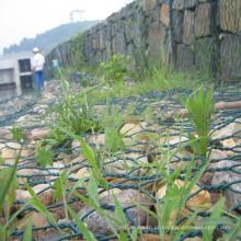 China fábrica de galvanizado PVC revestido gabião malha