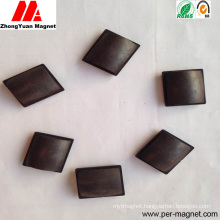 PA12/PA6 Injected Ferrite Bonded Magnet for Automobile
