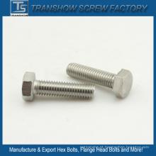 3 / 8-16X2 Inch 18-8 Aço Inoxidável Hexagon Bolts