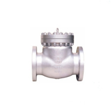 Stainless Steel ANSI B16.34 Check Valve